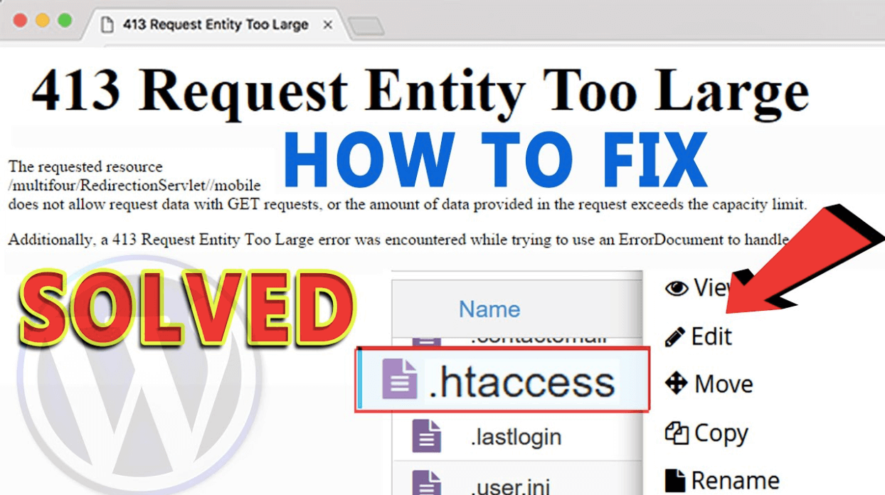 "How to fix the ""413 Request Entity Too Large"" Error in WordPress?"